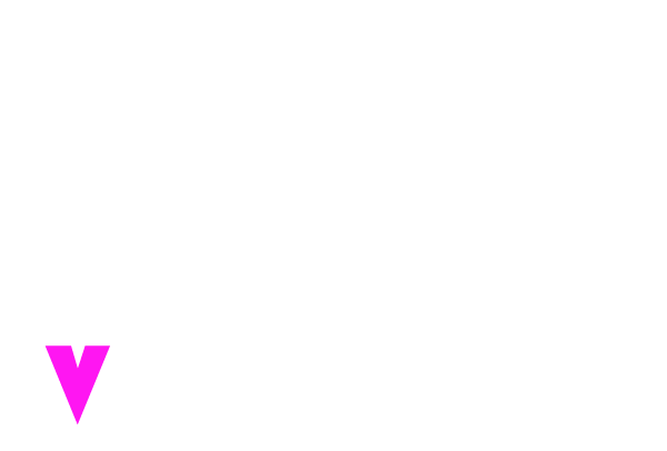 Visual Poke Logo